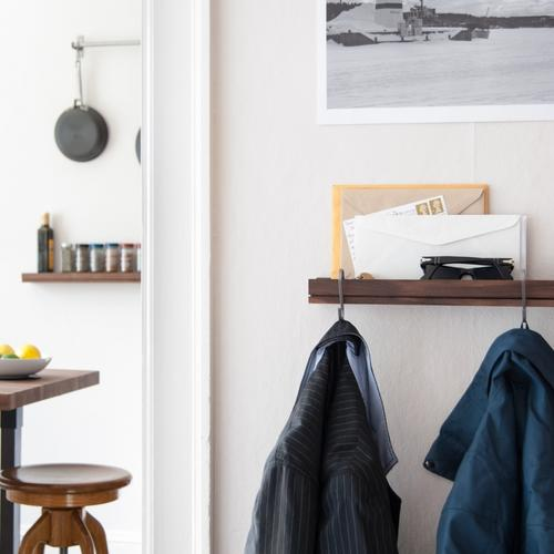 Singular Shelf | Mini