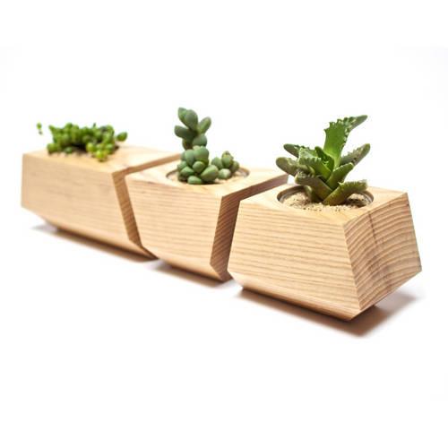 Boxcar Set, Ash Natural