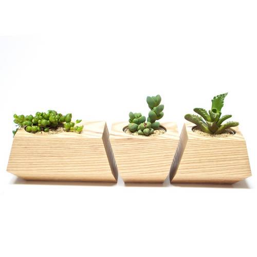 Boxcar Set Ash Natural - Revolution Design House